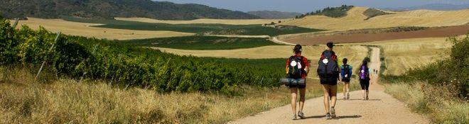 Camino de Campostello I will do this someday.