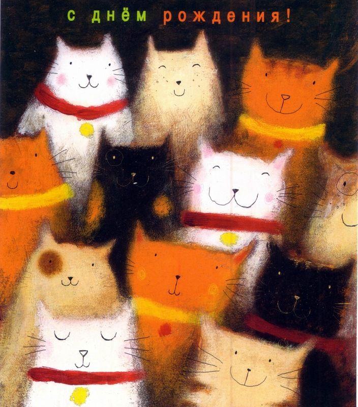 День рождения с котом открытка, аву