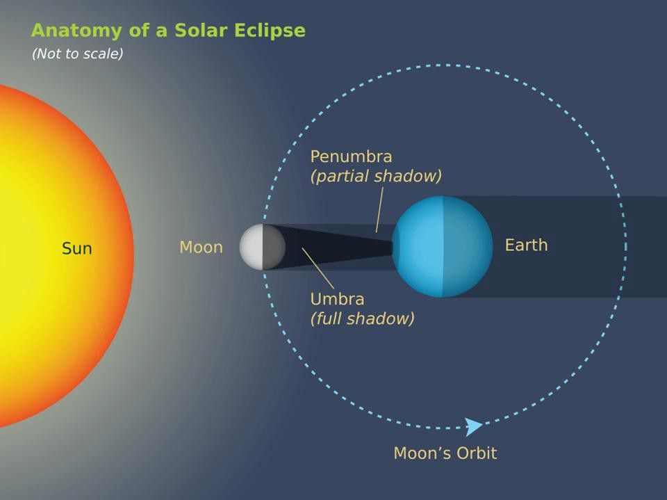 The Strangest Eclipse Fact Of All The Moon S Shadow Isn T A Circle Eclipse Facts Solar Eclipse Eclipse
