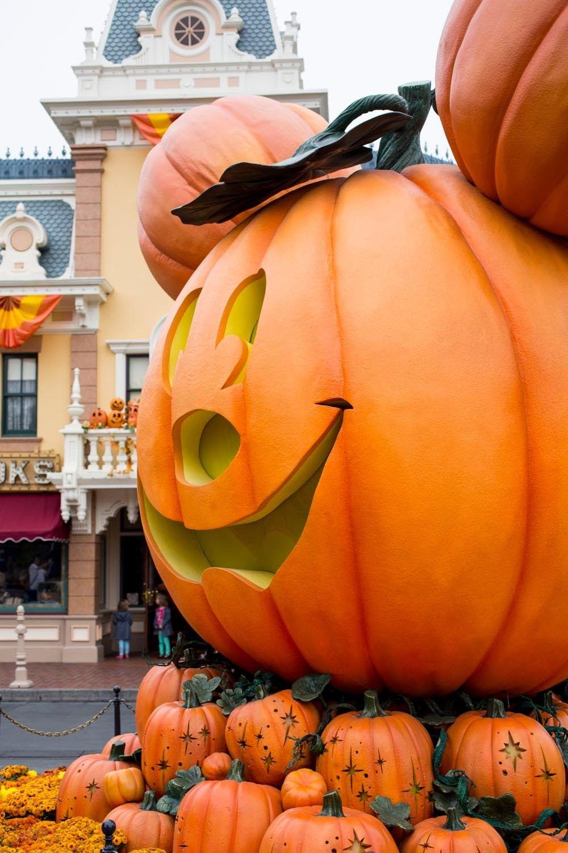 Photo of Halloween Zeit in Disneyland   Kelsey Bang
