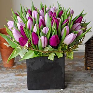 Love these tulips with a touch of ivy.