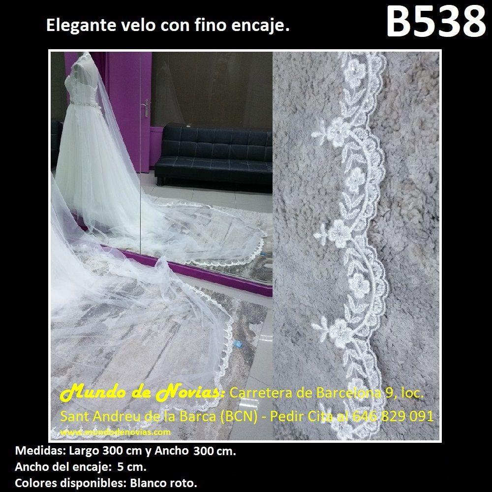 Elegante Velo de Novia de Tul con una elegante puntilla (encaje), de ...