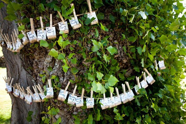 Place card tree. Wine corks with a slit to hold the cards. Strung on the tree with twine and clothes pins.