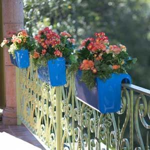 Viva Self Watering Railing Planter   National Garden Bureau
