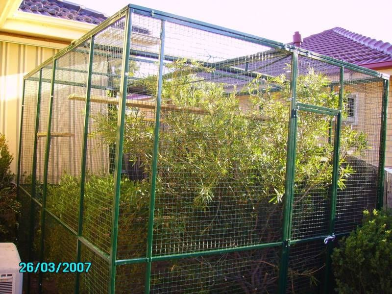 Pin by Jim Coombs on Cat Enclosures (With images