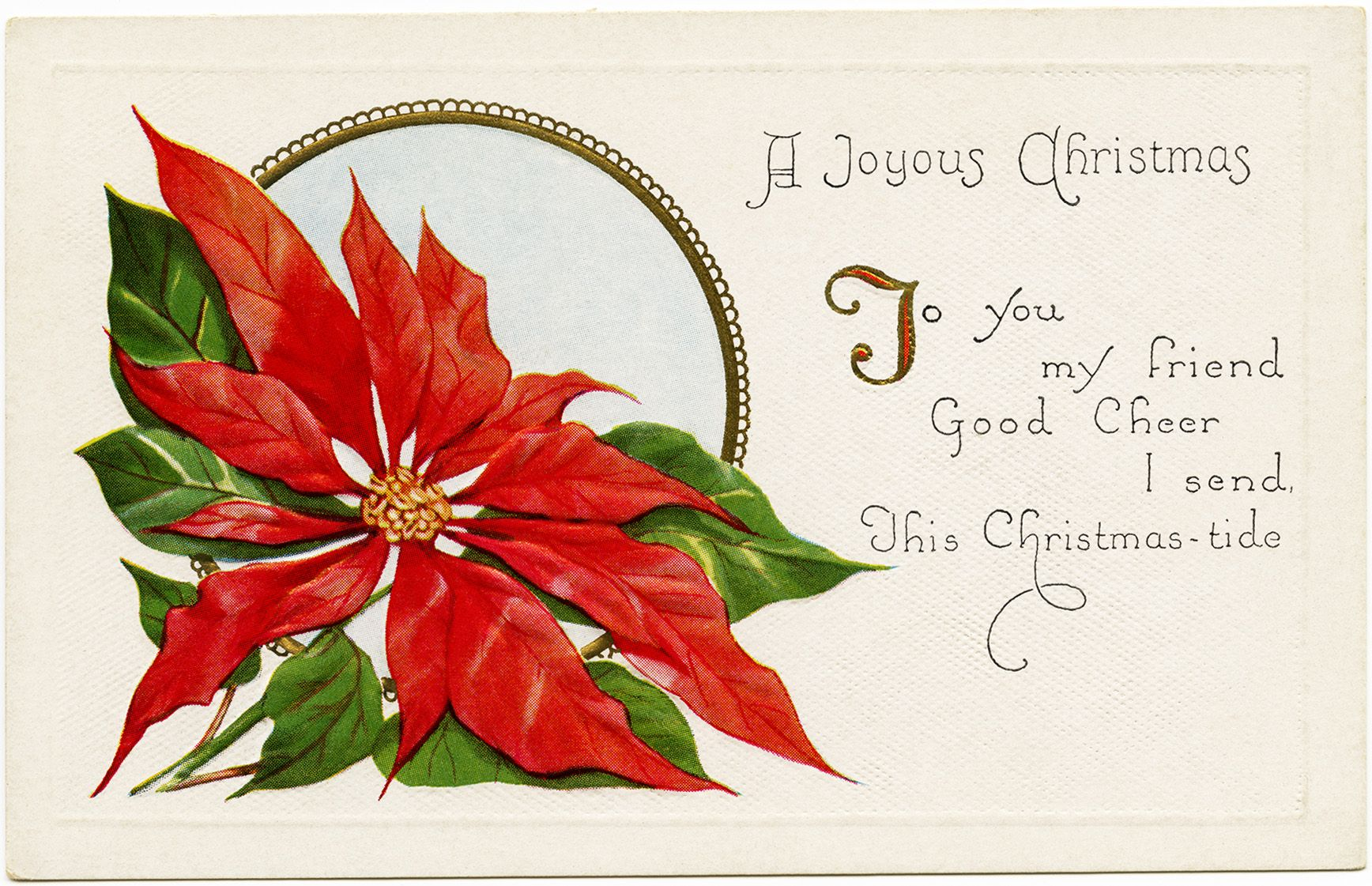Christmas vintage postcard poinsettia illustration old fashioned christmas vintage postcard poinsettia illustration old fashioned christmas card free holiday graphic kristyandbryce Image collections