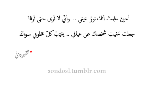 انك نور عيني Arabic Quotes Arabic Words Let S Talk About Love