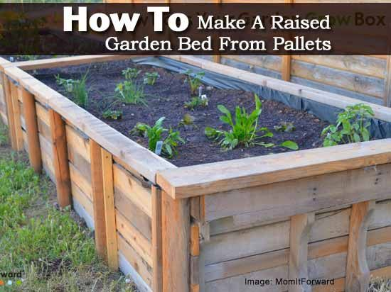 how to make a raised garden bed from pallets pallets