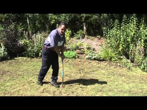How To Aerate A Lawn