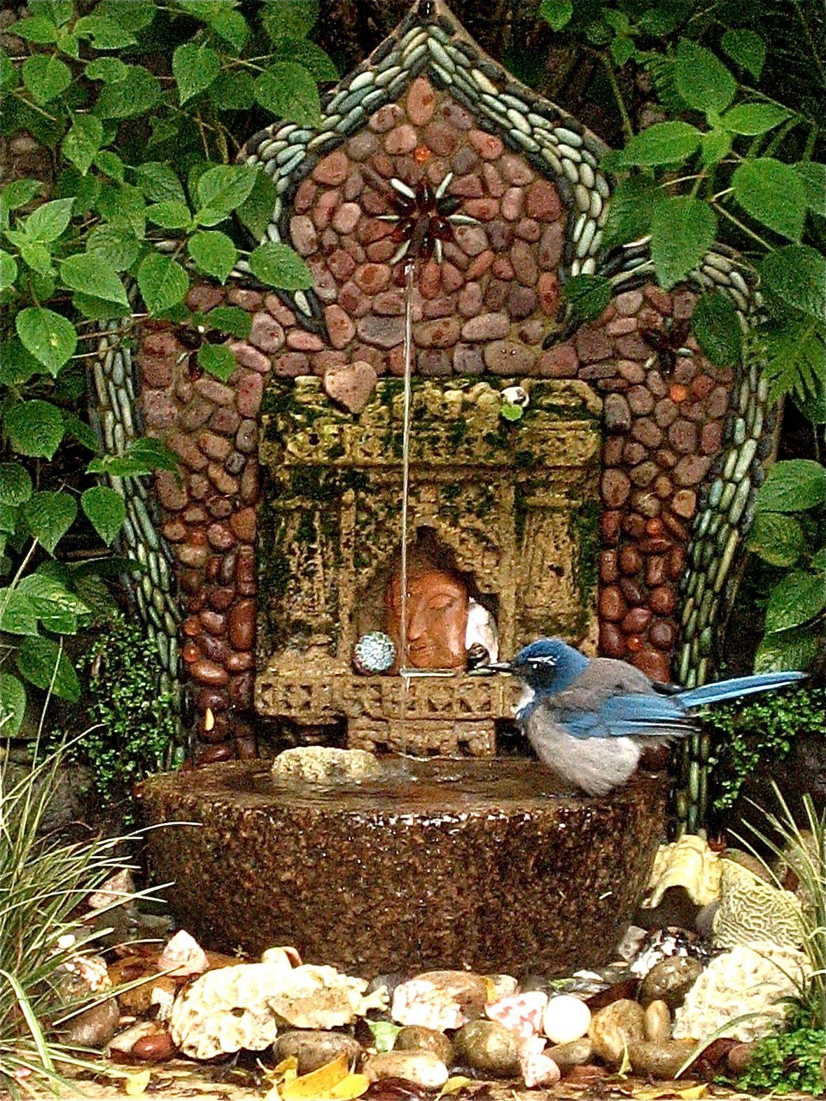 Blue Jay on fountain, Smith Garrett garden, San Francisco (Jeffery ...