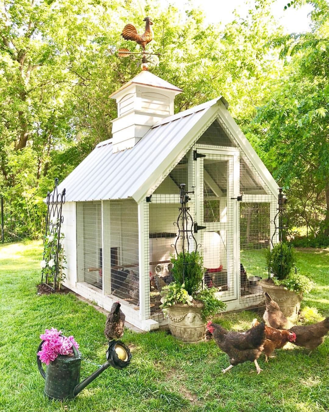 The Girls Of Eleven Gables Are So Happy It S The Weekend I M Happy The Flowers Are Blooming And It Chickens Backyard Backyard Chicken Coops Cute Chicken Coops
