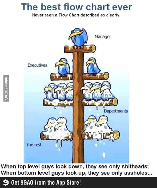 Best Corporate Flow Chart Humour Pinterest Funny Humor And