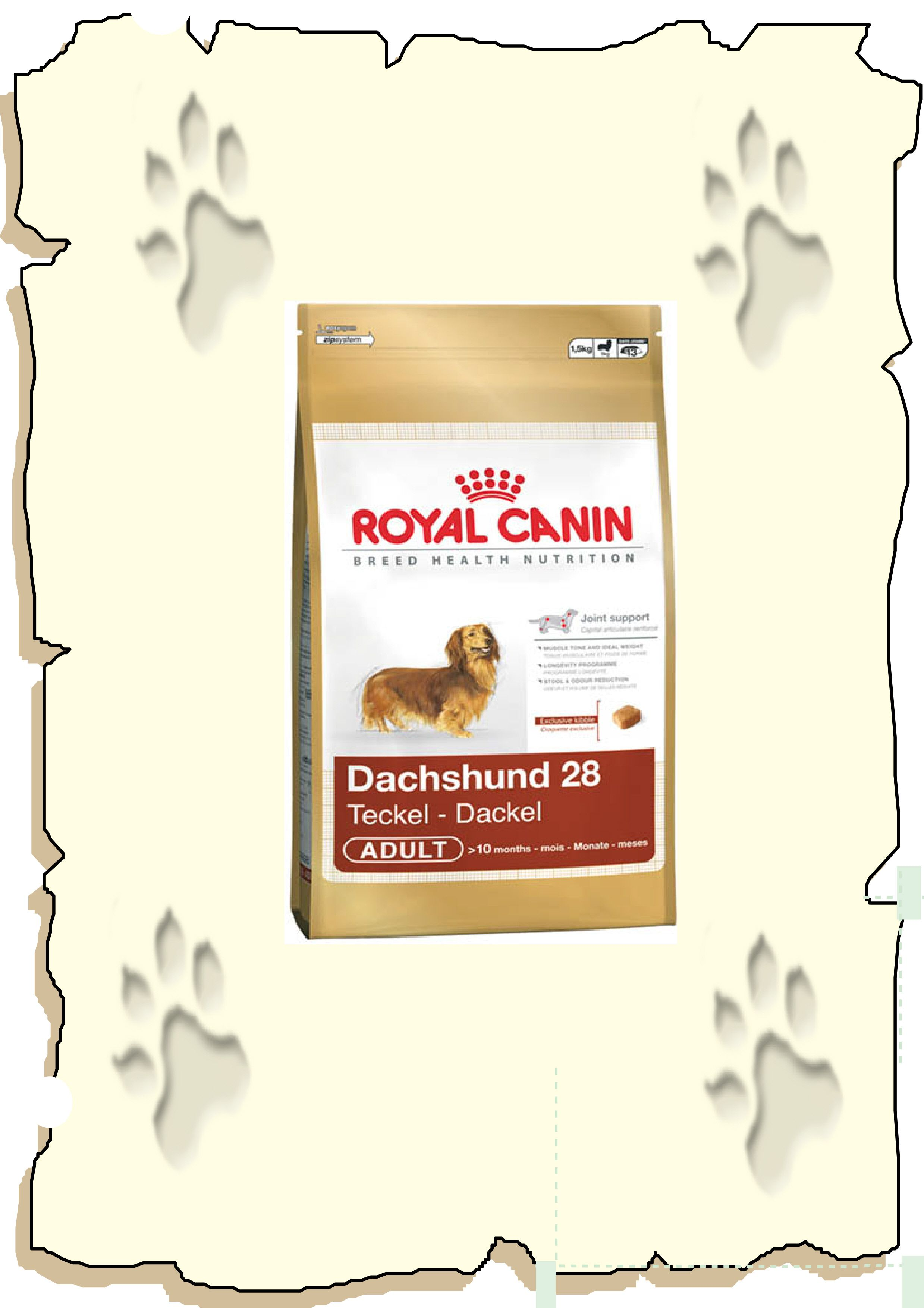 Royal Canin Dacshund Adult Ha My Dachshund Eats This Only The