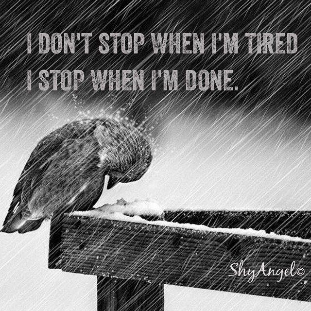 Den indre styrken er den som driver oss framover  #strong #tøff #rain #weather #toughness #little_things #human #life #live #love #strength