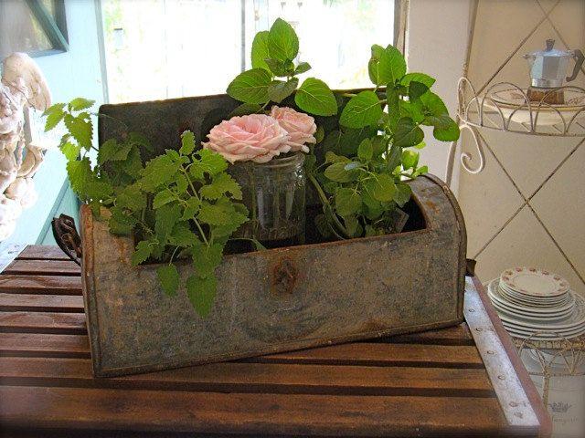 Antique French Zinc Botanical Box with original leather strap