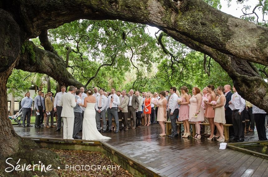 Ceremony At Treaty Oak Park In Jacksonville Fl Reception At