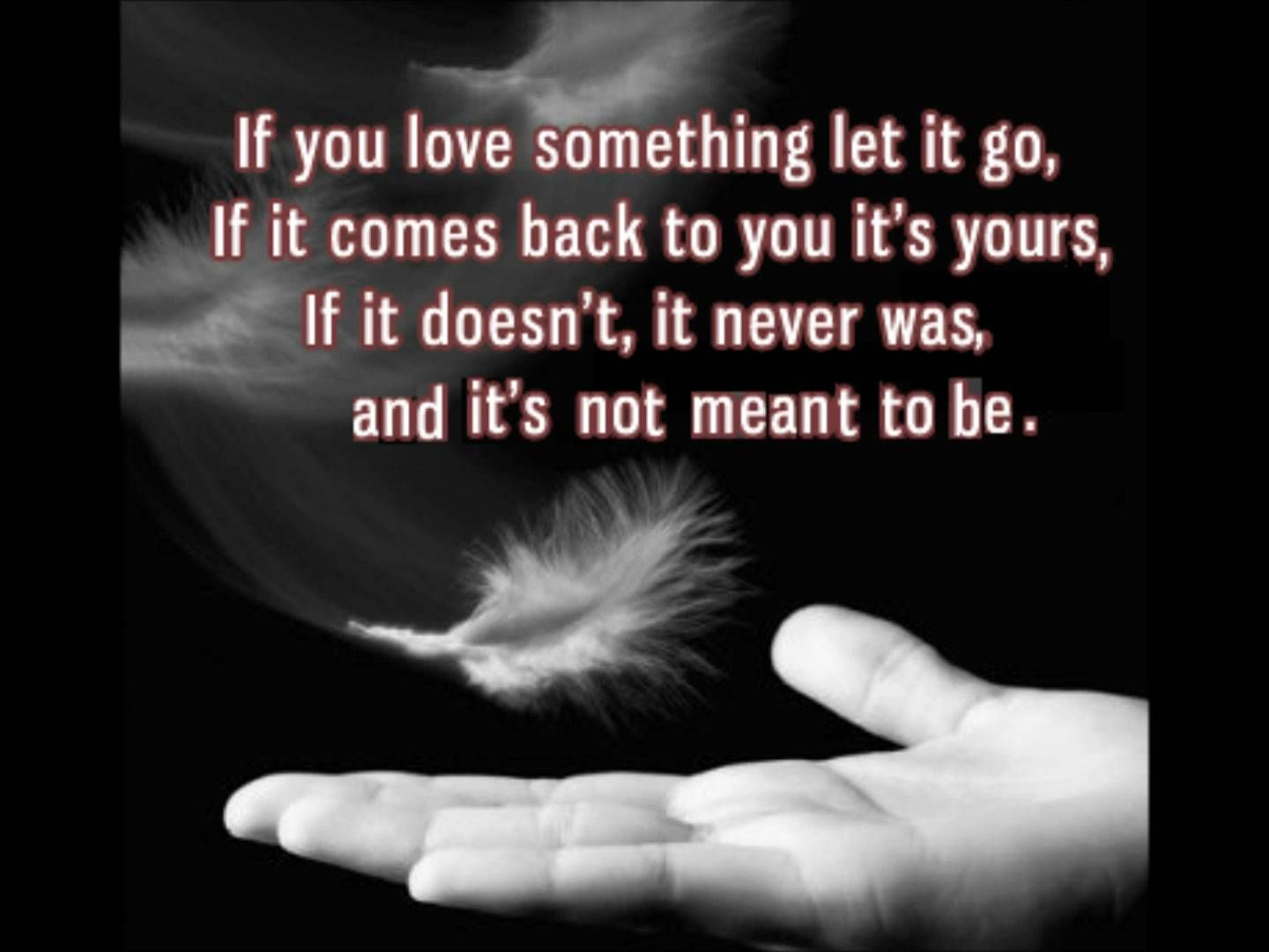 If You Love Something Let It Go, If It Comes Back To You