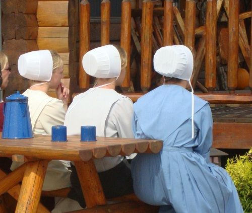 PATRIOT LOG HOME BUILDERS: Amish milled log homes
