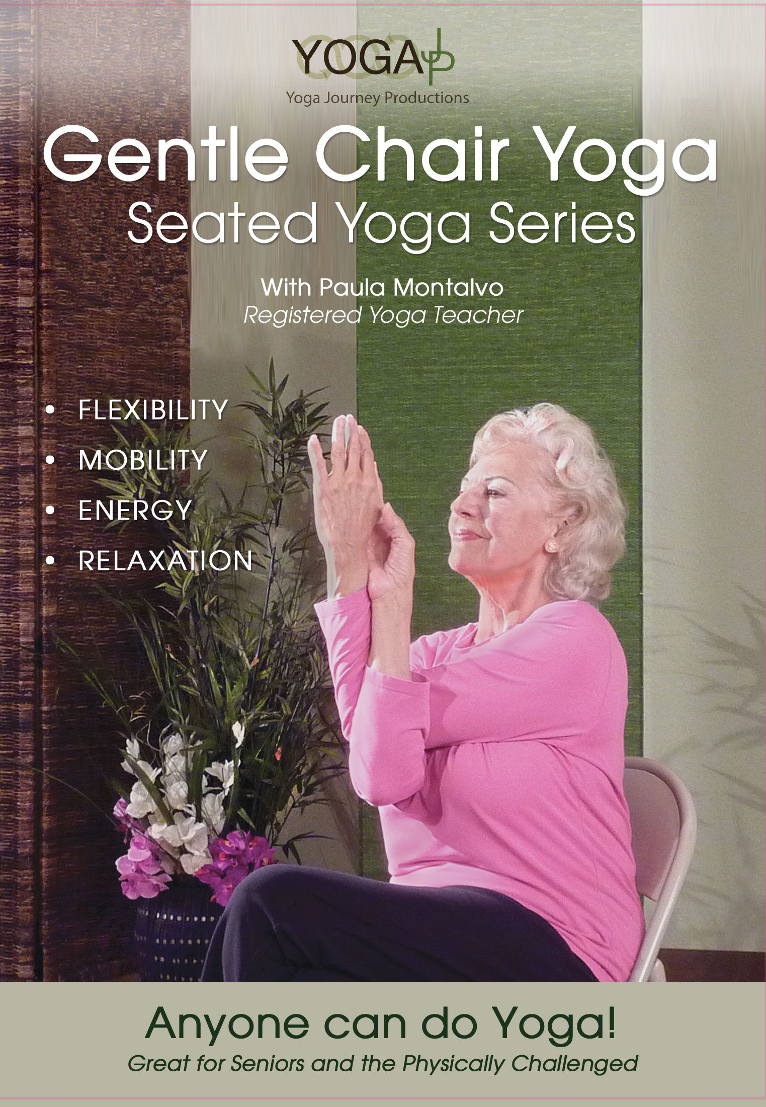 Gentle Chair Yoga Seated Series DVD How to do yoga