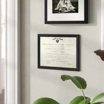 Charlton Home Worrell Rounded Ash Document and Award Frame Color: Black