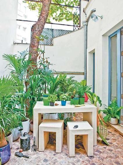 Terraza Intima Outdoor Backyard Garden Arch