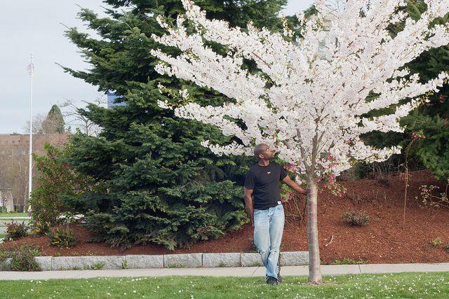 Hello Cherry Blossom by tyfn, via Flickr - Canon XSI+50mm f/1.8 | ISO 100, 1/8 sec, f/18