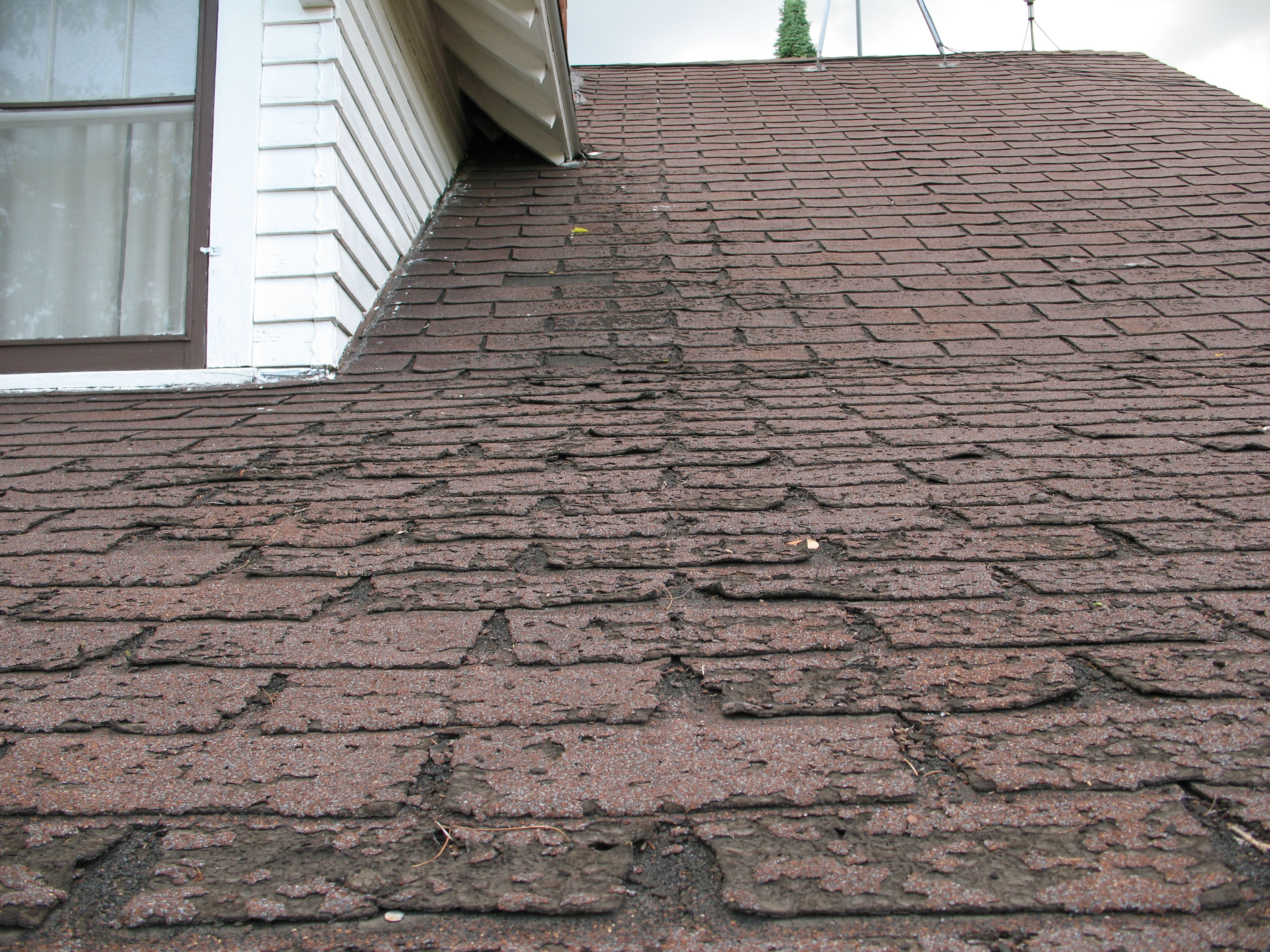 Fixing A Leaky Roof Can Be Costly Repair Learn How To Fit It