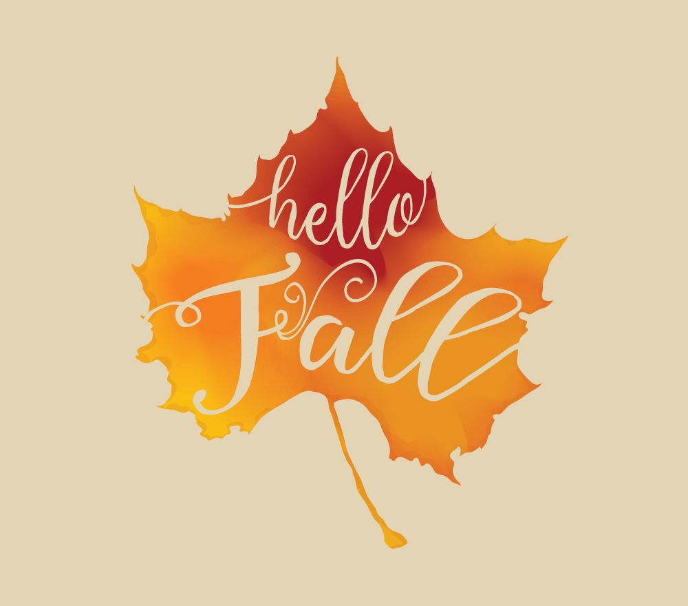 How To Create A Watercolor Fall Leaf In Illustrator Illustrator