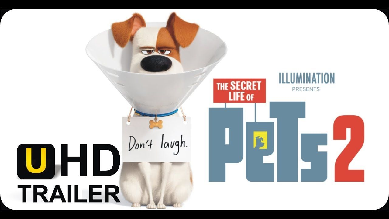 The Secret Life Of Pets 2 Official Trailer 2019 The Rooster Secret Life Of Pets Official Trailer Secret Life