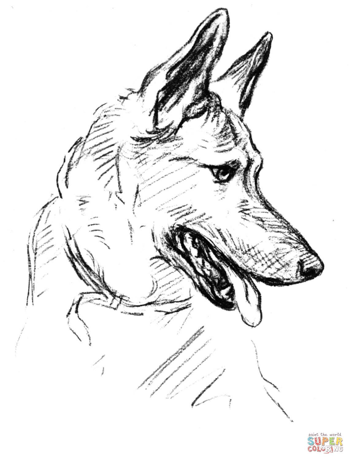 german shepherd dog portrait coloring page free printable - German Shepherd Coloring Pages