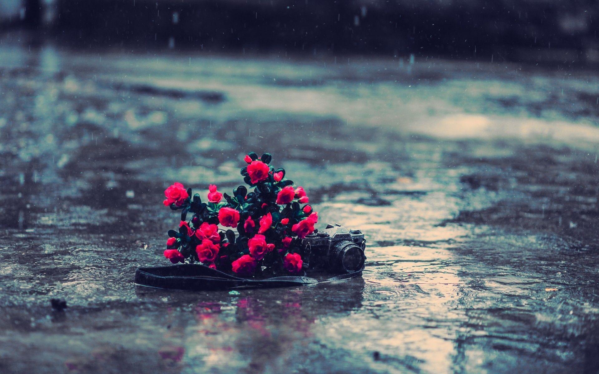 Hd wallpaper rain - Hd Rain Backgrounds Wallpapers 9