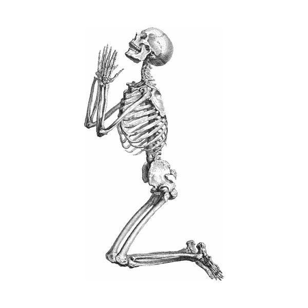Free Skeleton Clipart Public Domain Halloween Clip Art Images And Graphics Halloween Clipart Art Clip Art