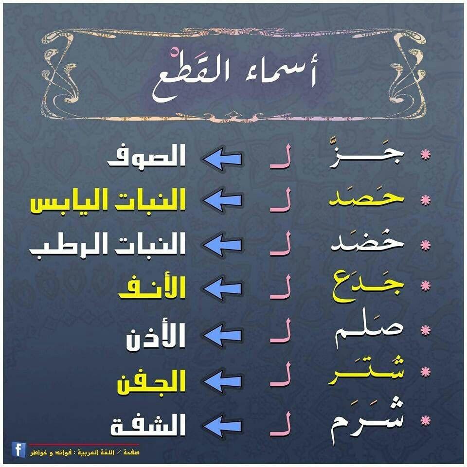 أسماء الق ط ع في اللغة العربية Learn Arabic Language Arabic Language Learning Arabic