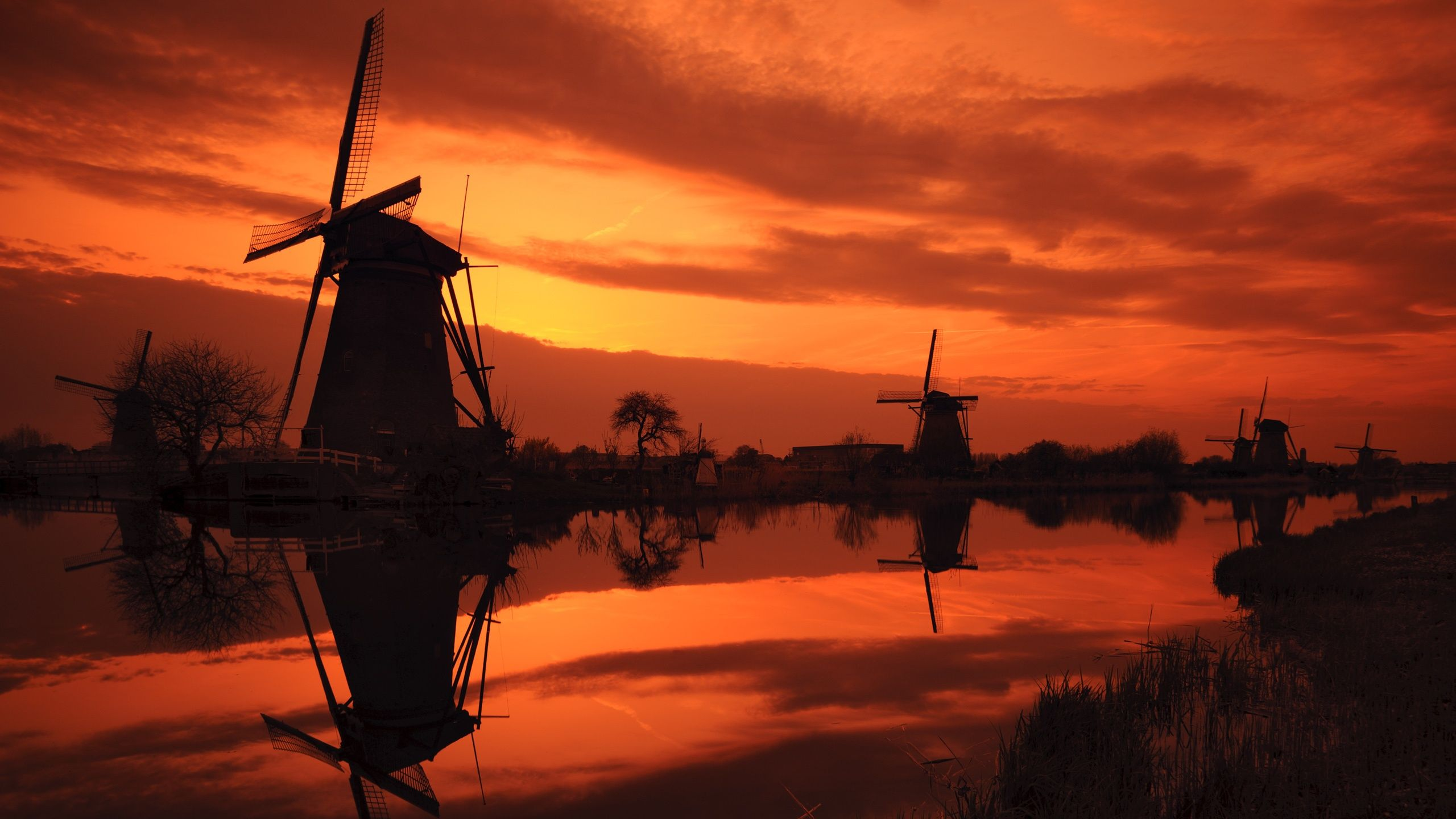 Kinderdijk Sunset (25601440). #Followme #CooliPhone6Case on