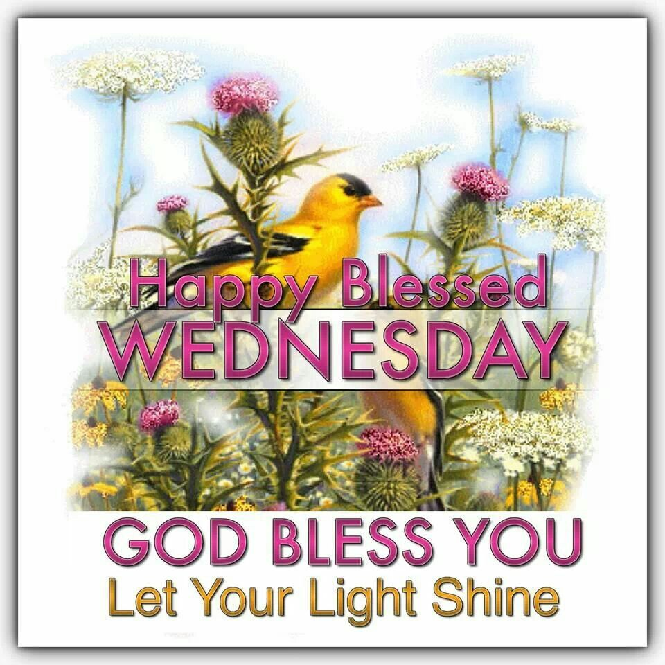 Happy blessed wednesday may god bless you daysoccasions explore wednesday greetings and more kristyandbryce Images