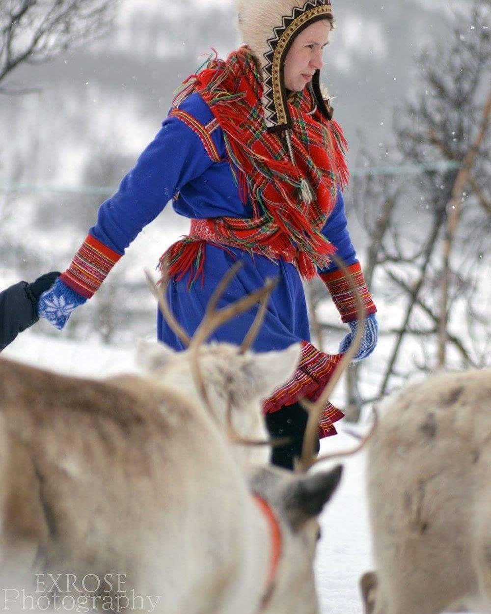 Amazing Sami People In Tromso Norway Norway Tromso Sami Reindeer Scandinavia Norwegian Tromso Safari Tromsoarcticr Norway People Tromso Tromso Norway