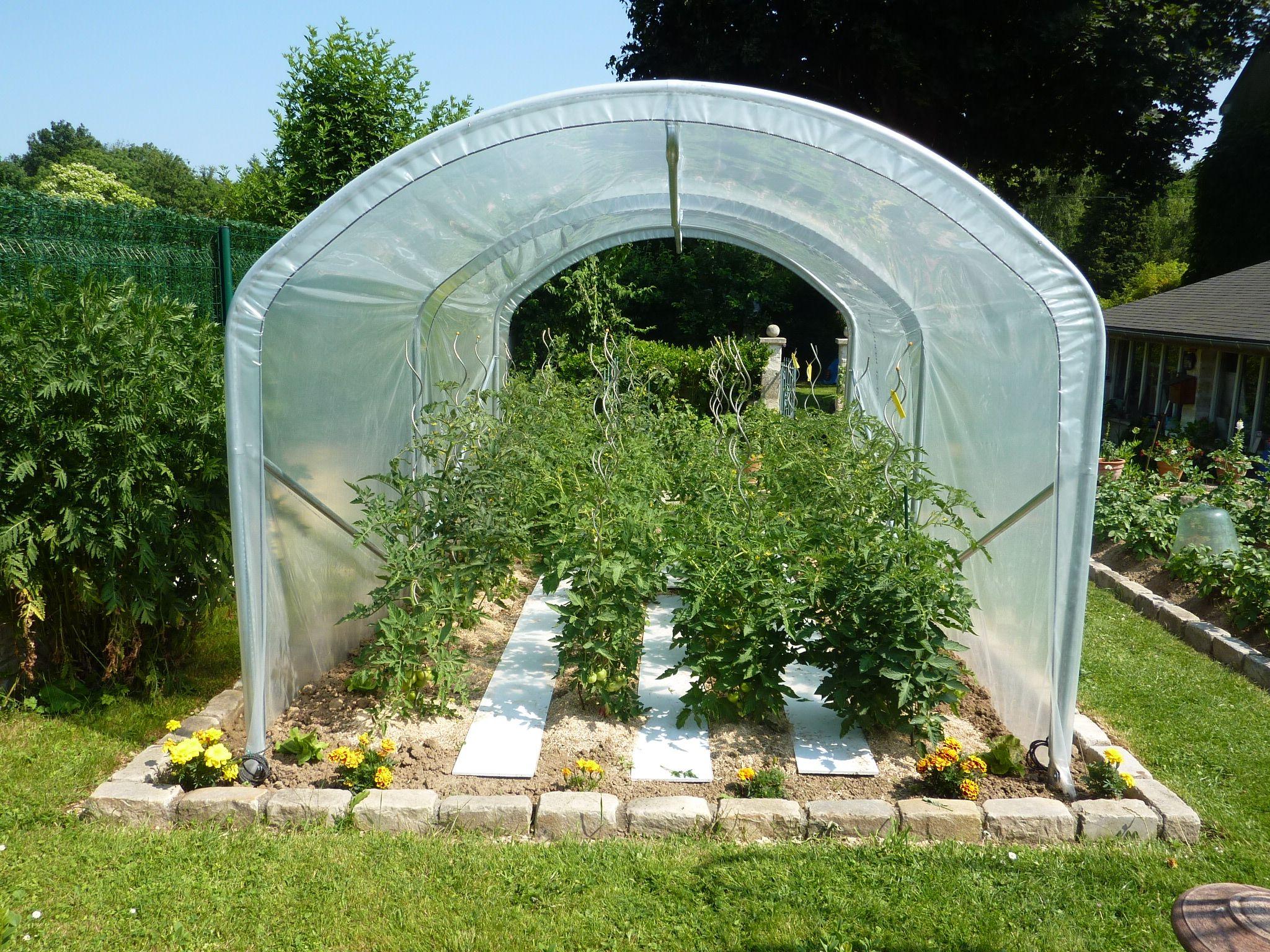 Serre Tunnel Largeur 6 M Serre A Tomate Serre Jardin Et Tunnel