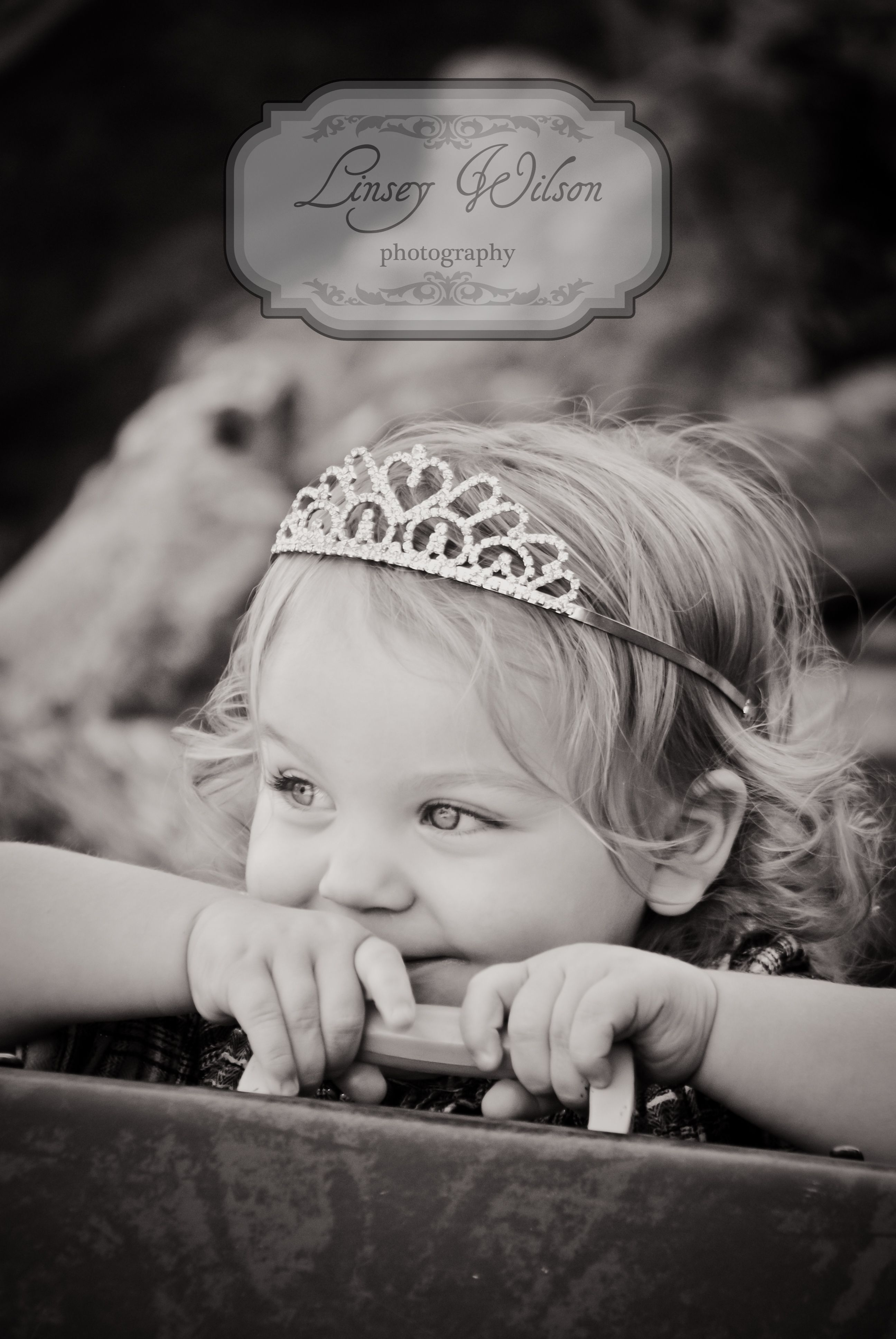 2nd birthday photo shoot i love this maybe use the one