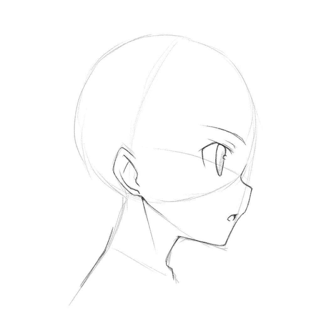 Anime Face Side View Tutorial C Mangaacademy Anime Amino Drawing Heads Manga Drawing Tutorials Anime Drawings Tutorials