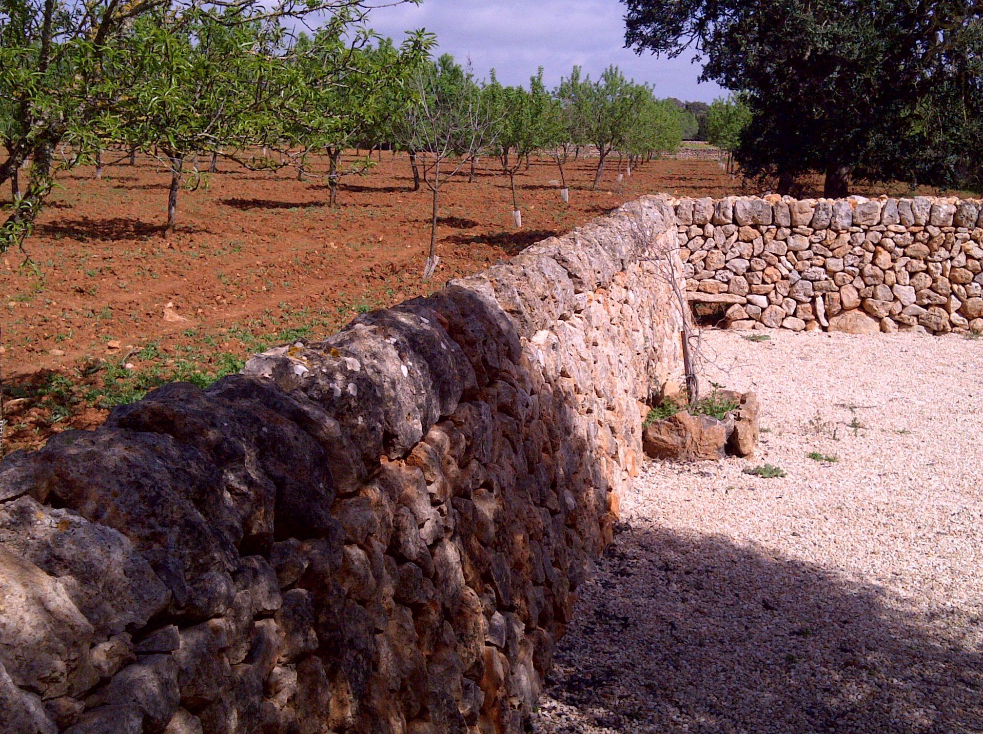 Cerramiento perimetral de finca con pared de piedra seca - Cerramientos de piedra ...