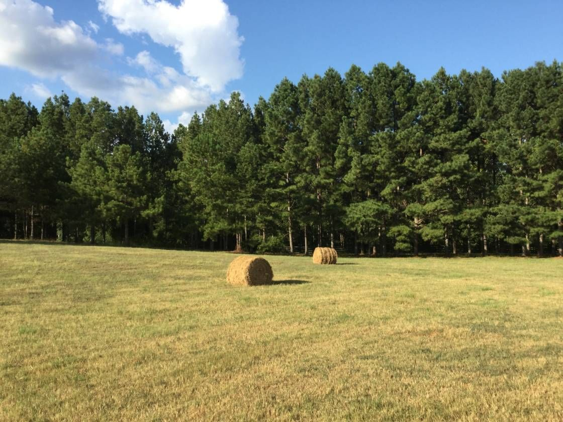 Horse property for sale in county