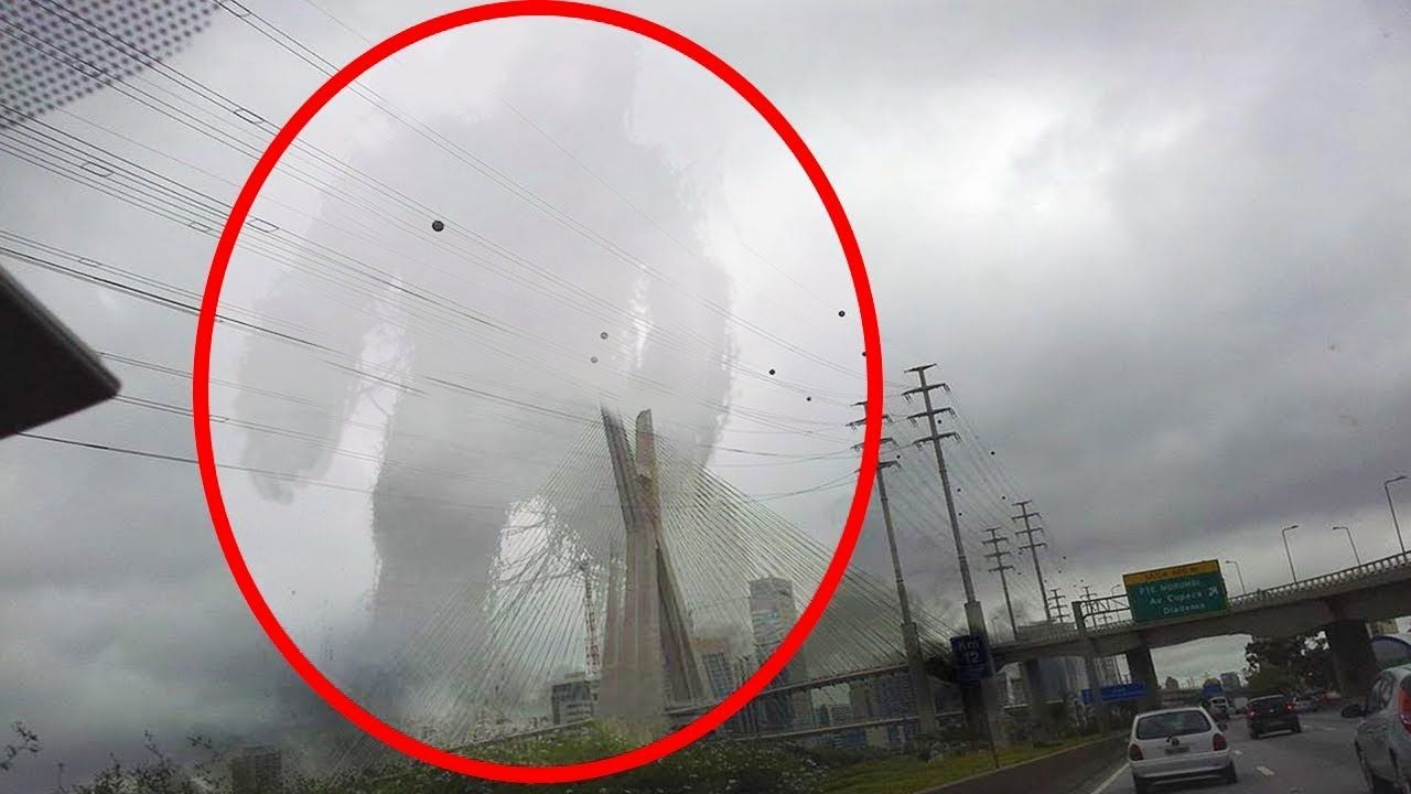 5 real giants creatures caught on camera spotted in real life