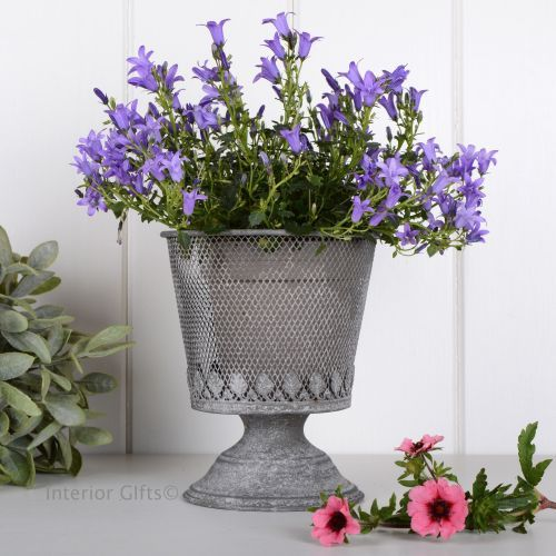 Aged Zinc Metal Wire Mesh Footed Planter Galvanised Rustic Plant Pot For Flowers Herbs Or Bulbs Flower Pots Planters Plants