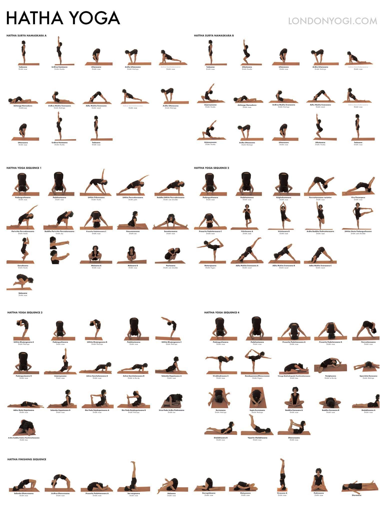 Yoga Hatha Positions