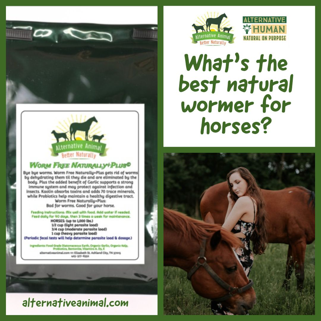 Worm Free Naturally PlusNatural Dewormer for Horses