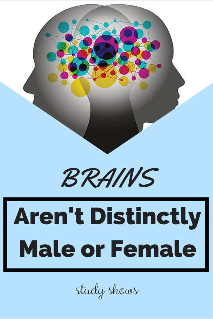 Human Brains Arent Distinctly Male or Female, Study Says