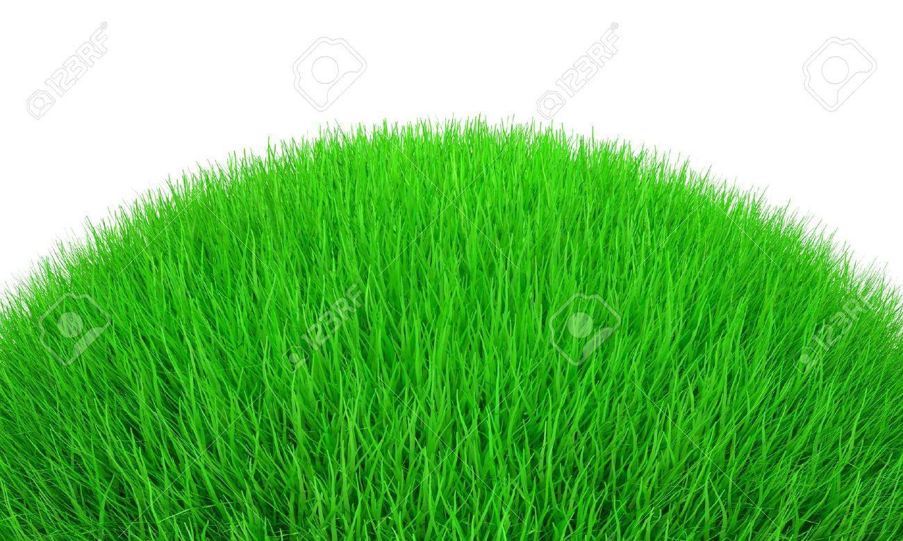 Cartoon Grass Field To...