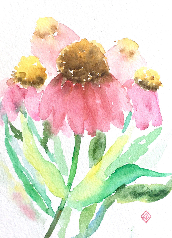 Echinacea Flowers 5 1 2 X 7 1 2 Original Watercolor Painting