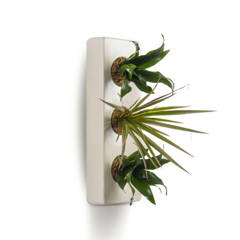 Ceramic Planter - Triple