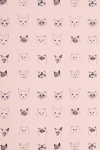 Cats Wallpaper behang van poesjes www.mim-pi.com